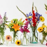 Most Beautiful/Pretty Flowers From Around The World