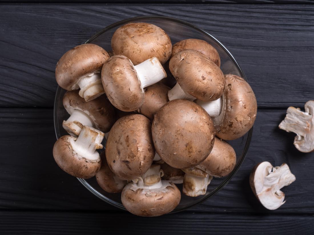 mushroom facts