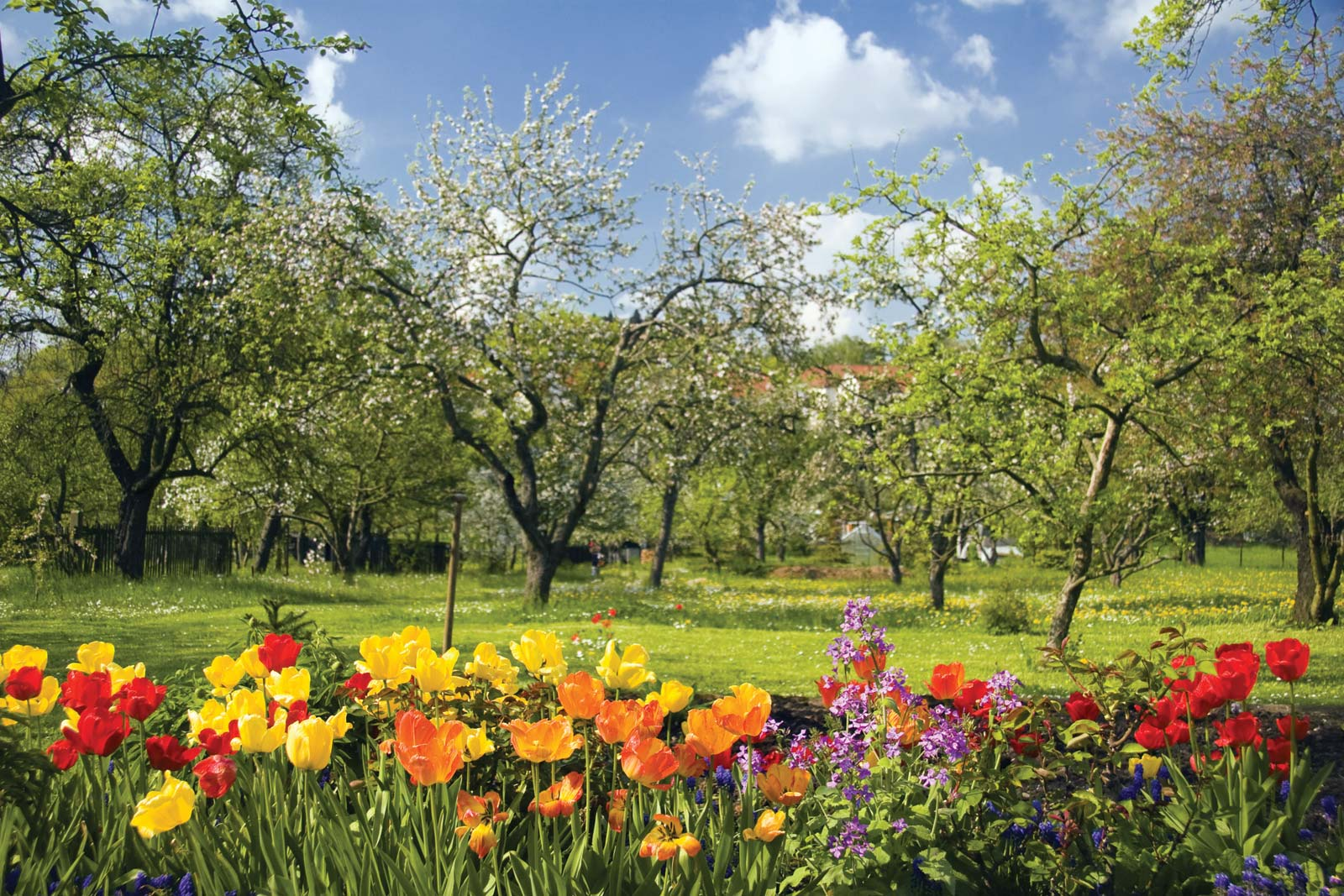 spring facts and trivias