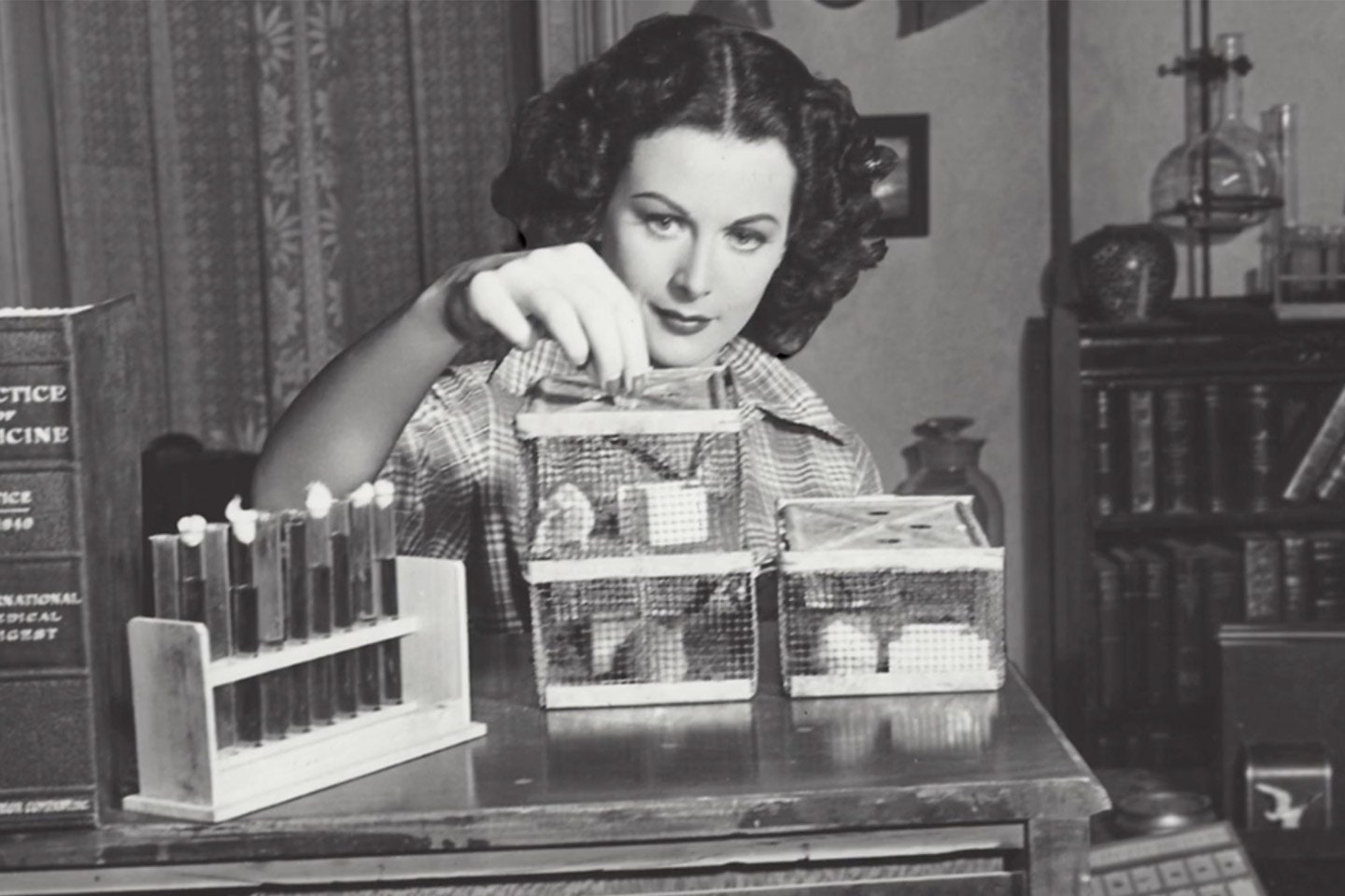 Hedy Lamarr  famous female engineer